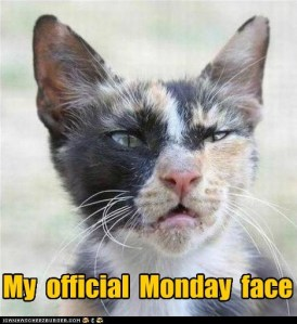 funny-pictures-my-official-monday-face