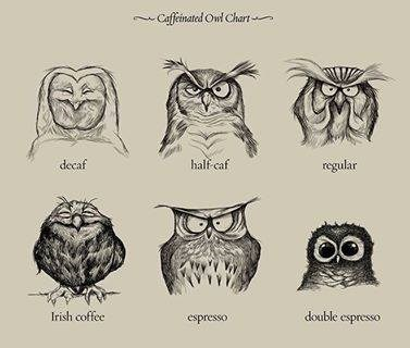 Coffee owl chart