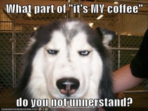 funnydogs MY coffee