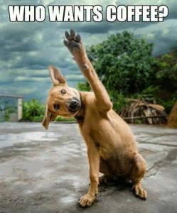 He wants coffee