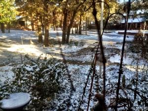 snow 11-17-14