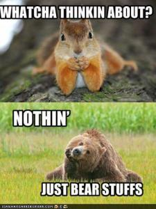 Thinking-lol squirrel and bear