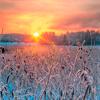 Meathiel_WinterDawn