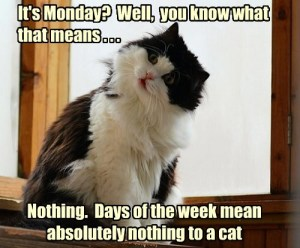 monday-means-nothing
