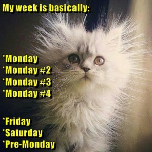 week-of-mondays