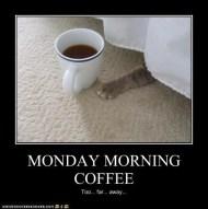 monday morning coffee reach